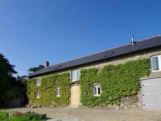 3 bedroom Cottage for rent in Dartmoor