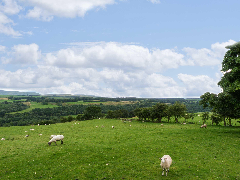 Hadrian's View