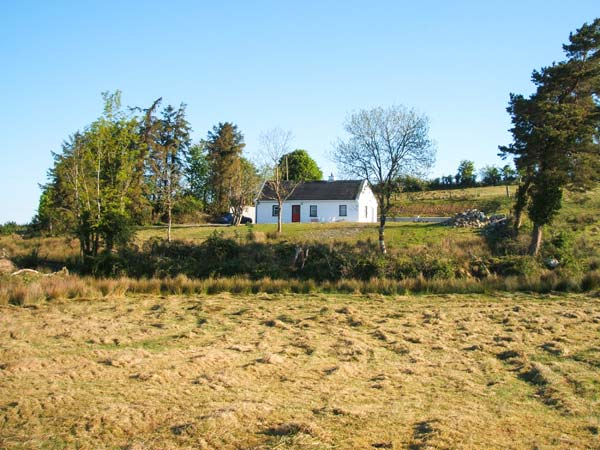 Lough Allen View