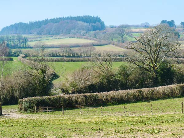 Higher Whiddon Farm Whiddon Well Image 9