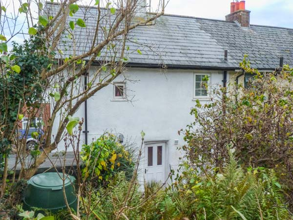 holiday let Ottery St Mary Cornflower Cottage