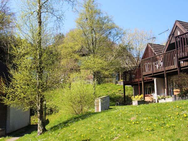 Beechdene Lodge