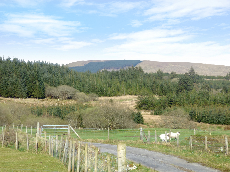 singles in ardara Irish townlands english gaeilge deutsch français search for a townland, subtownland, civil parish, barony or county search.