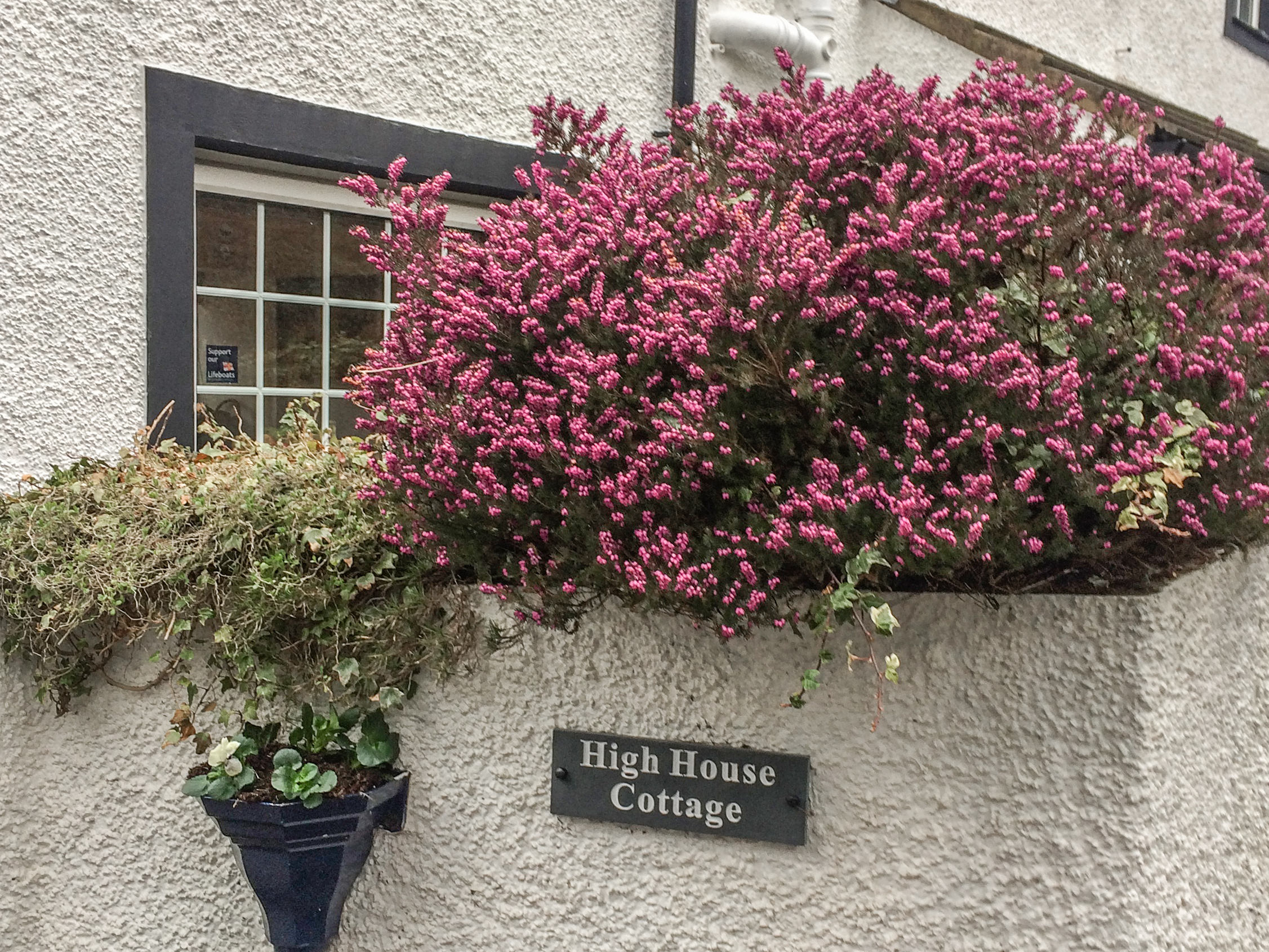 High House Cottage