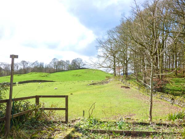 Hazel - Woodland Cottages Image 1