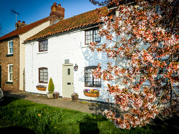 holiday let West Lutton Clara's Cottage