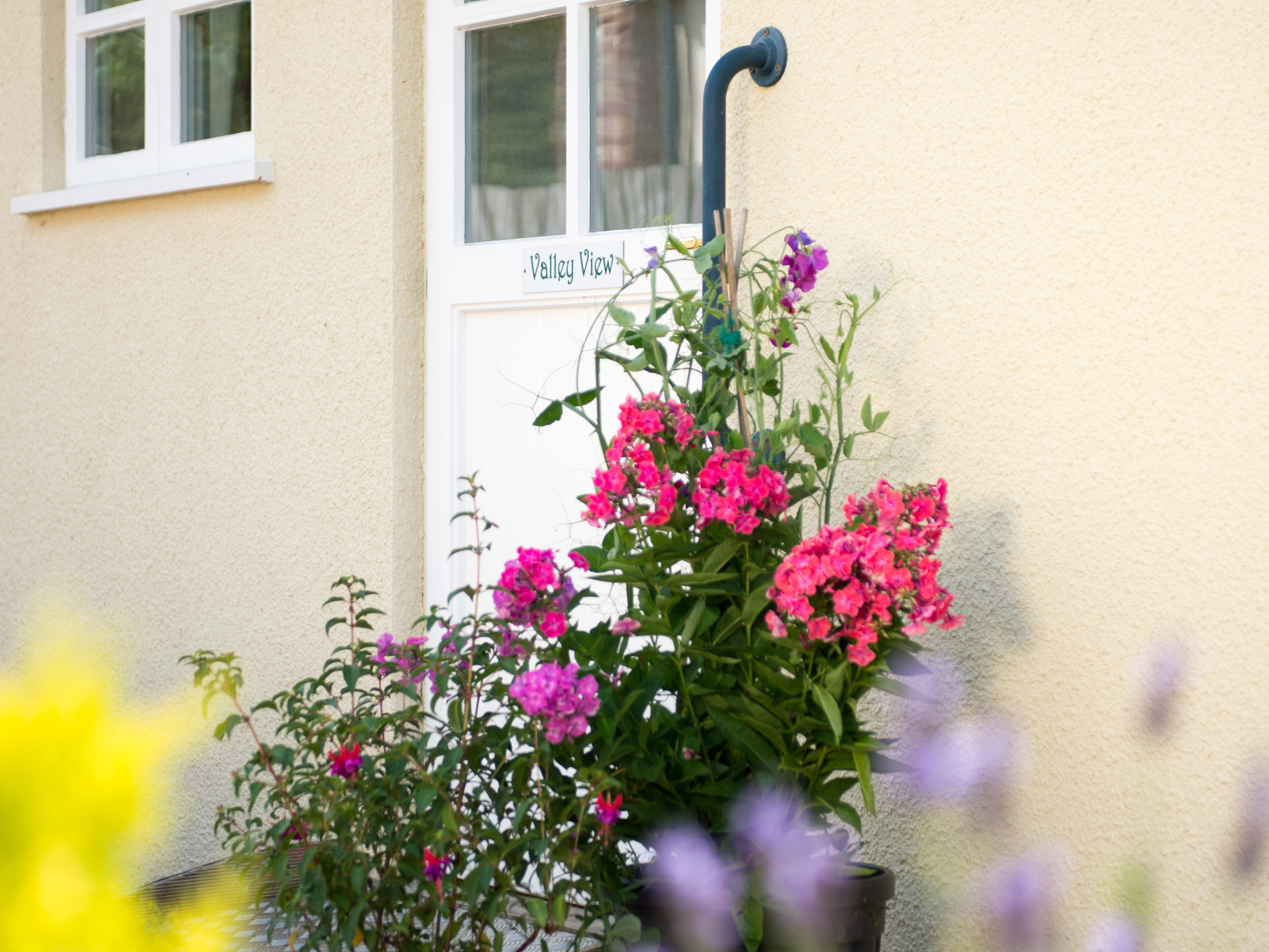 2 bedroom Cottage for rent in Honiton