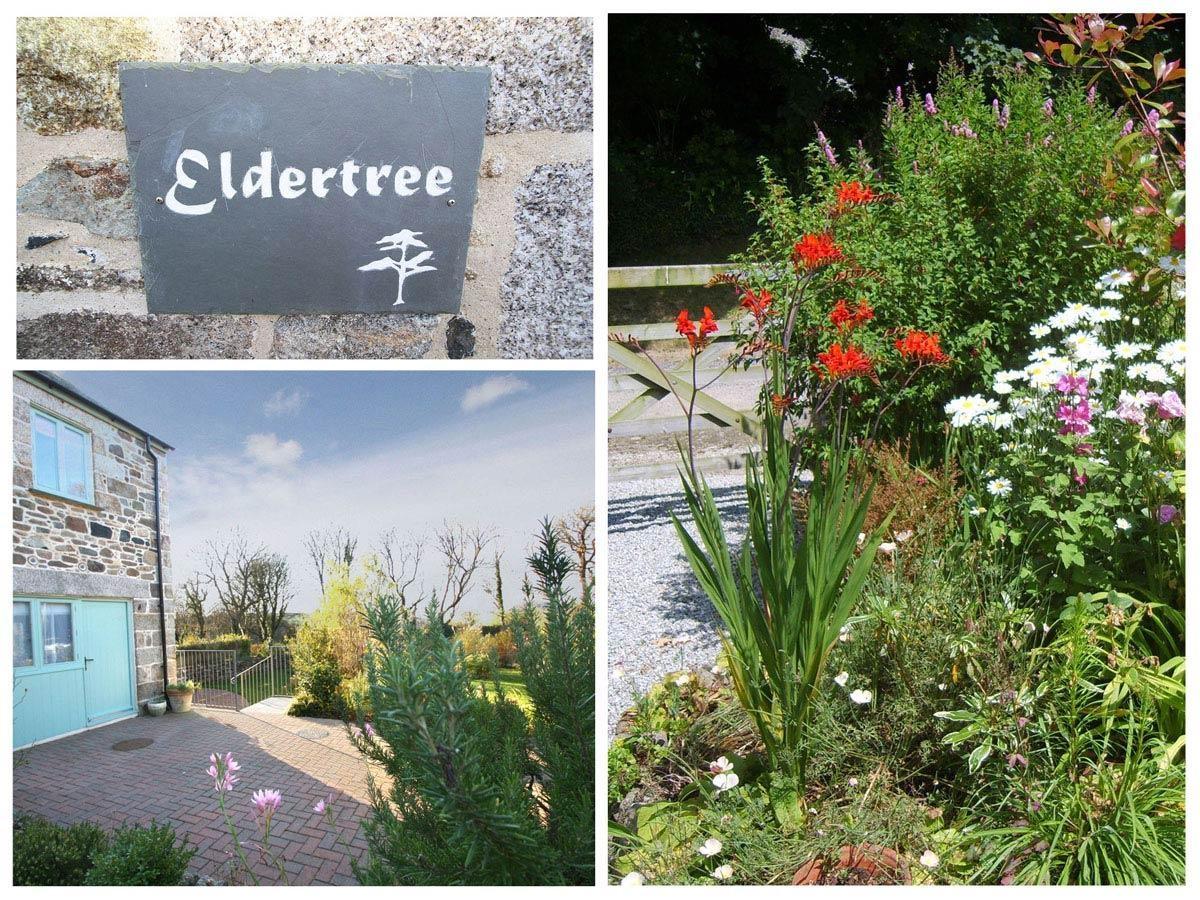 Eldertree