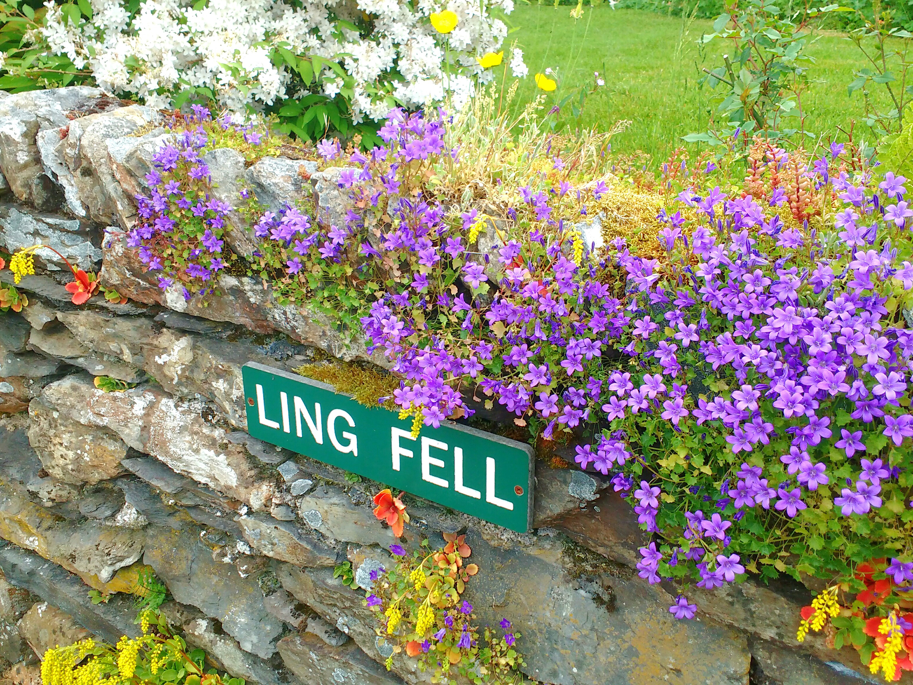 Ling Fell Cottage