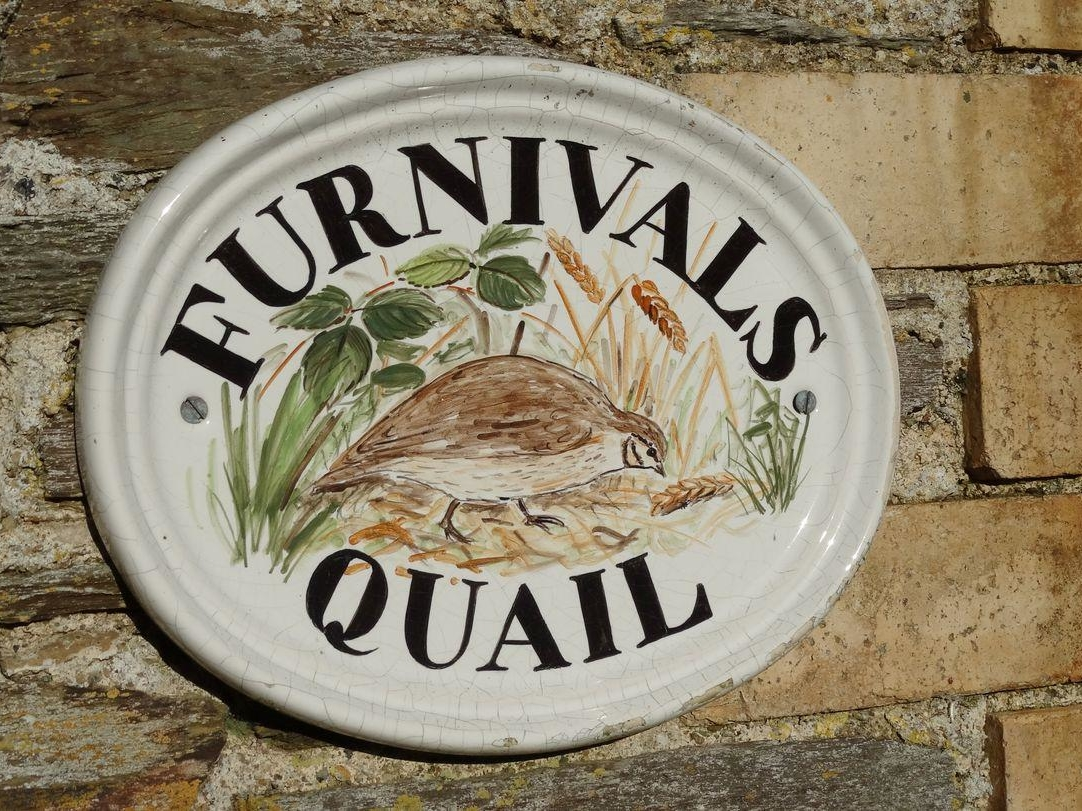 Furnivals Quail