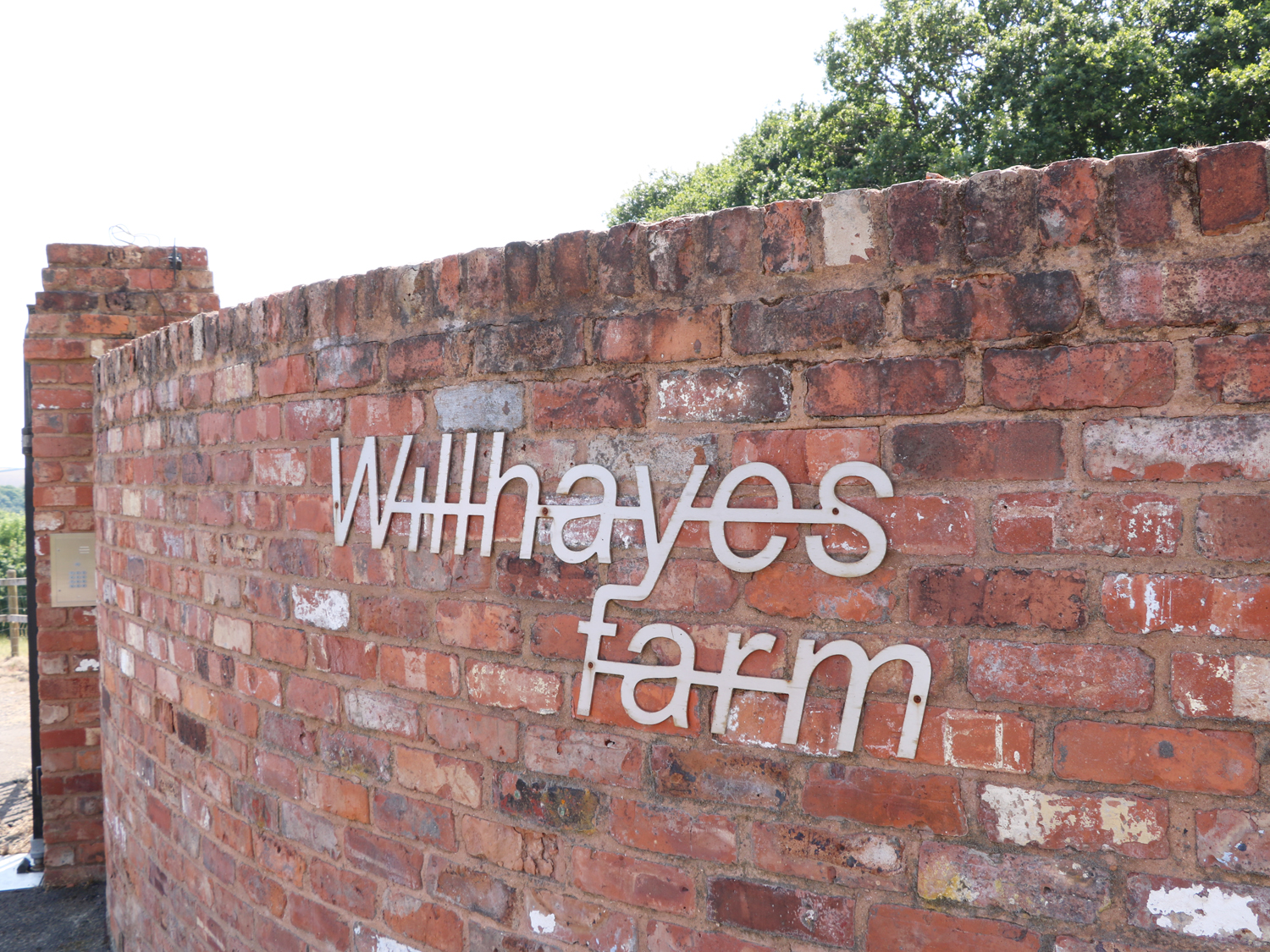 Willhayes