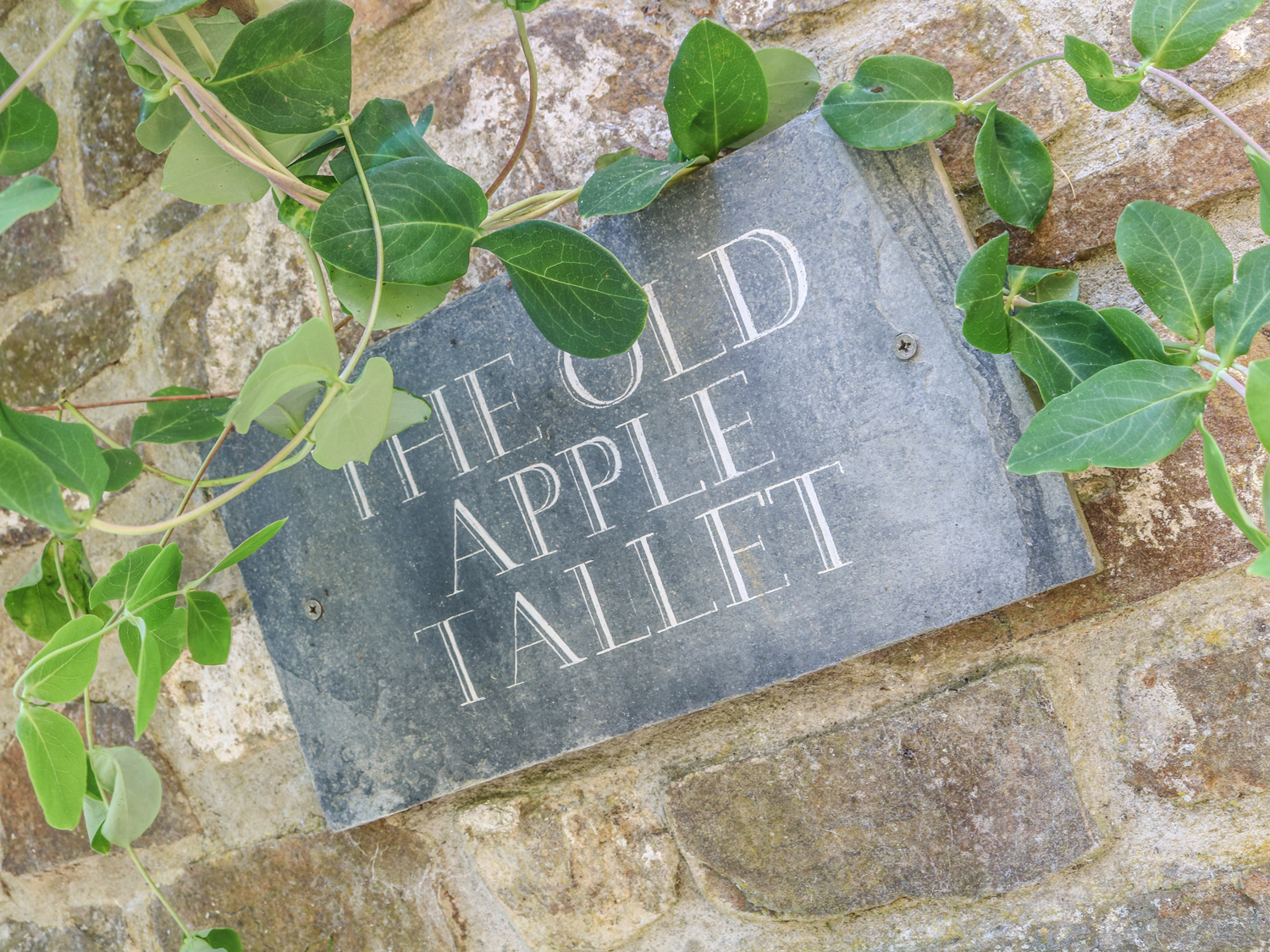 The Old Apple Tallet