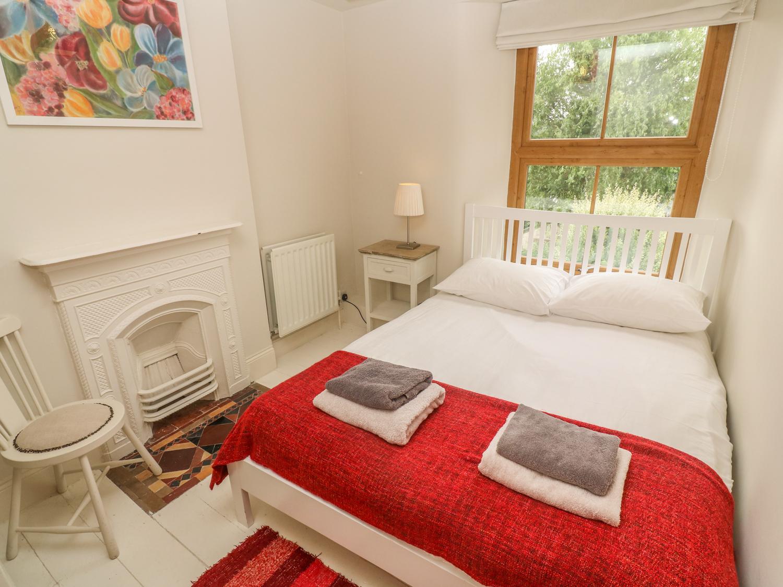 Astrantia Cottage