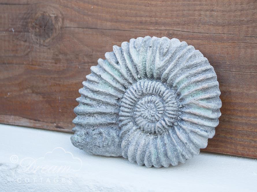 Ammonite Cottage
