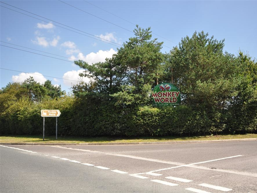 Coombe Orchard