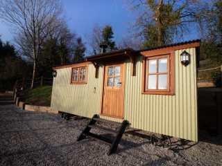 1 bedroom Cottage for rent in Barnstaple