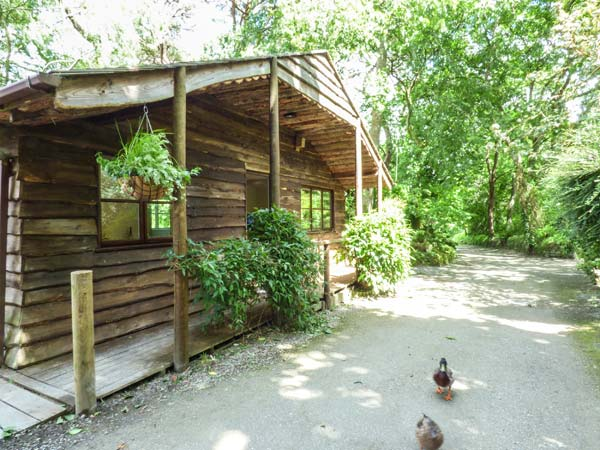 1 bedroom Cottage for rent in Cliffdwellers