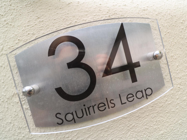 34 Squirrels Leap