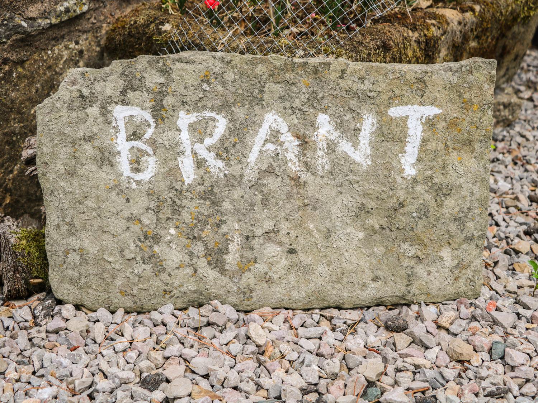 Brant View