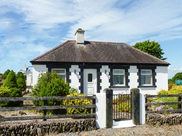 Bracken,Ireland