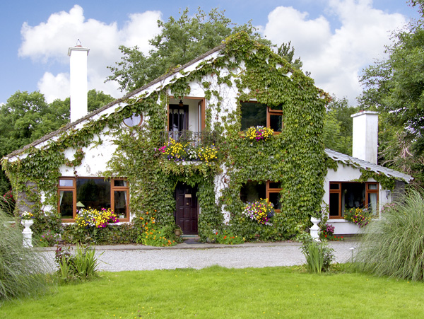 Brewsterfield Lodge Cottage,Ireland