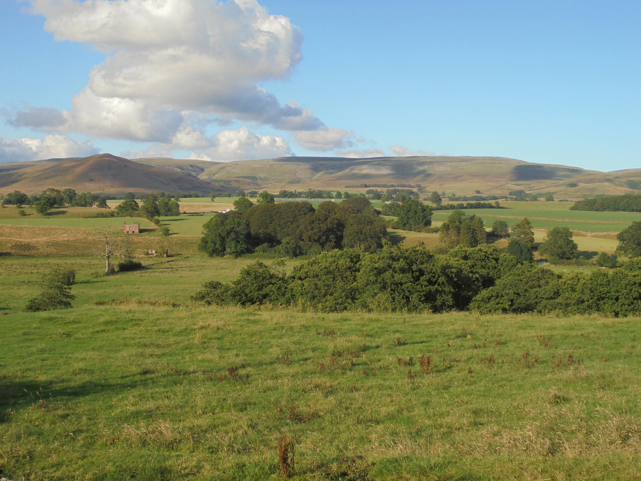 1 Pennine View