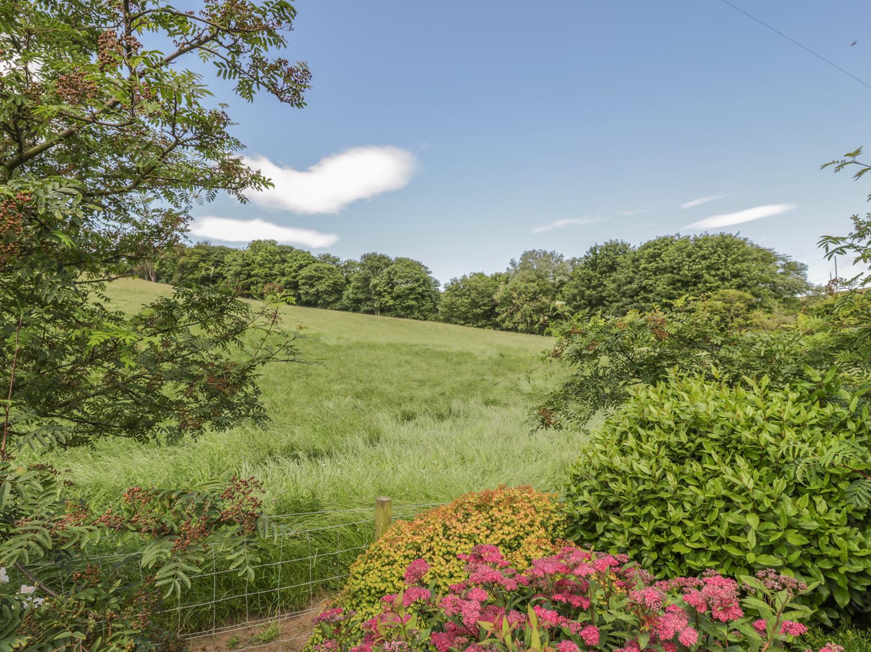 Near Bank Cottage, Northumbria