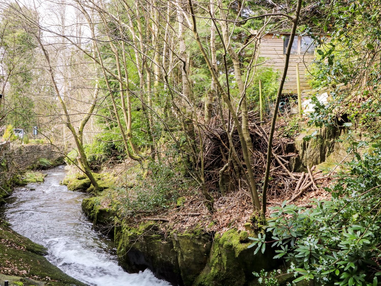 Bluebell Brook