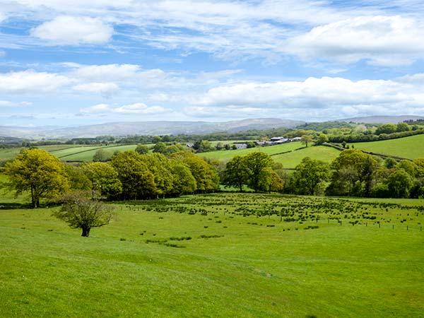 Black Mountain View, Wales