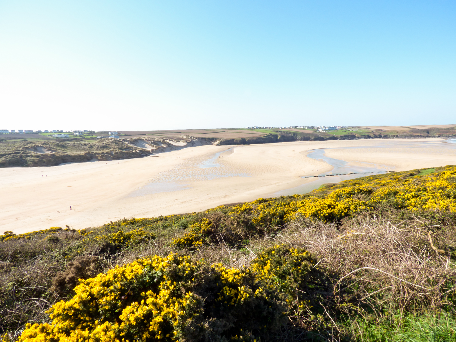 Fistral Outlook