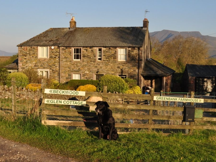 Glen Cottage Image 1