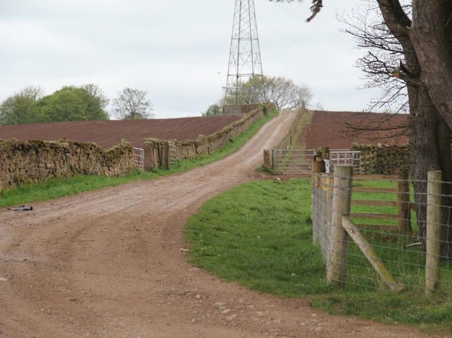 Eden View