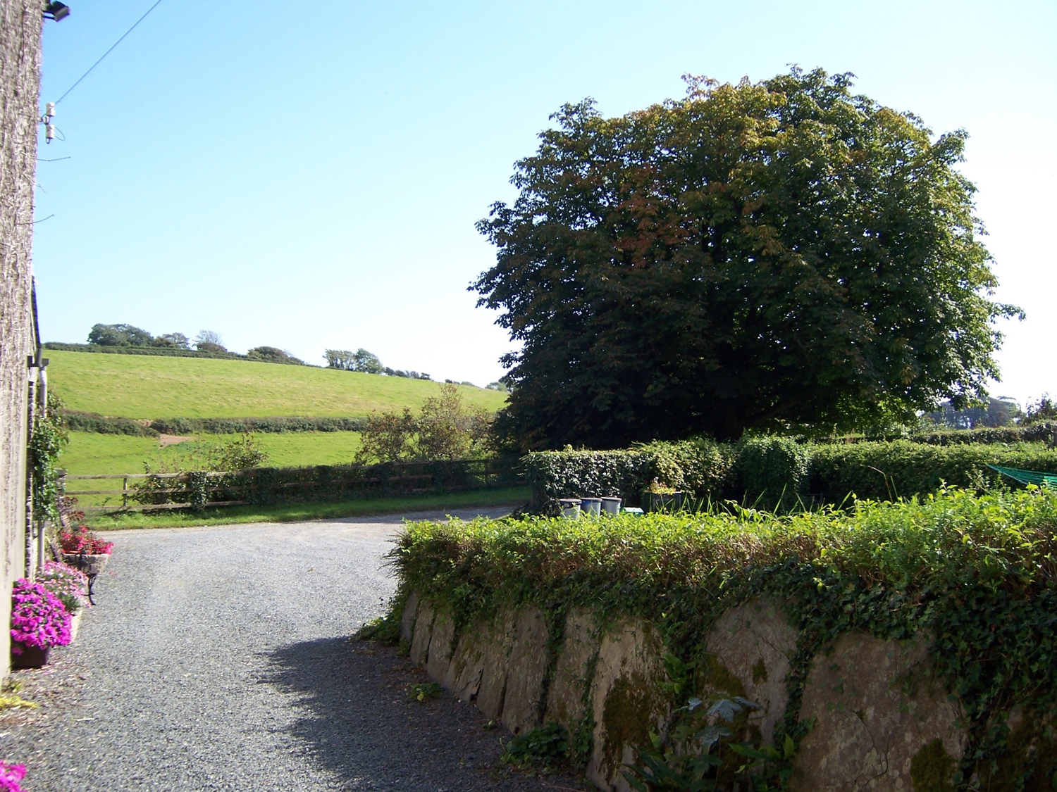 The Cottage Centry Farm