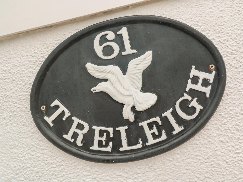 Treleigh